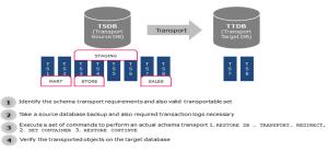 Schema Transport Example